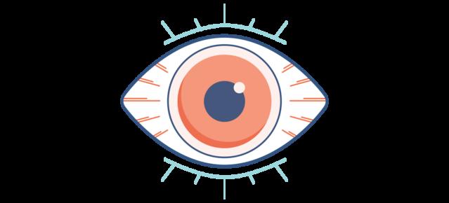 Dry Eye Disease Symptoms